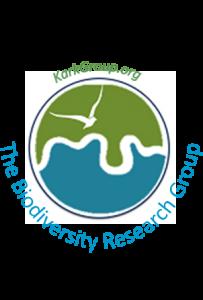 Kark Group logo