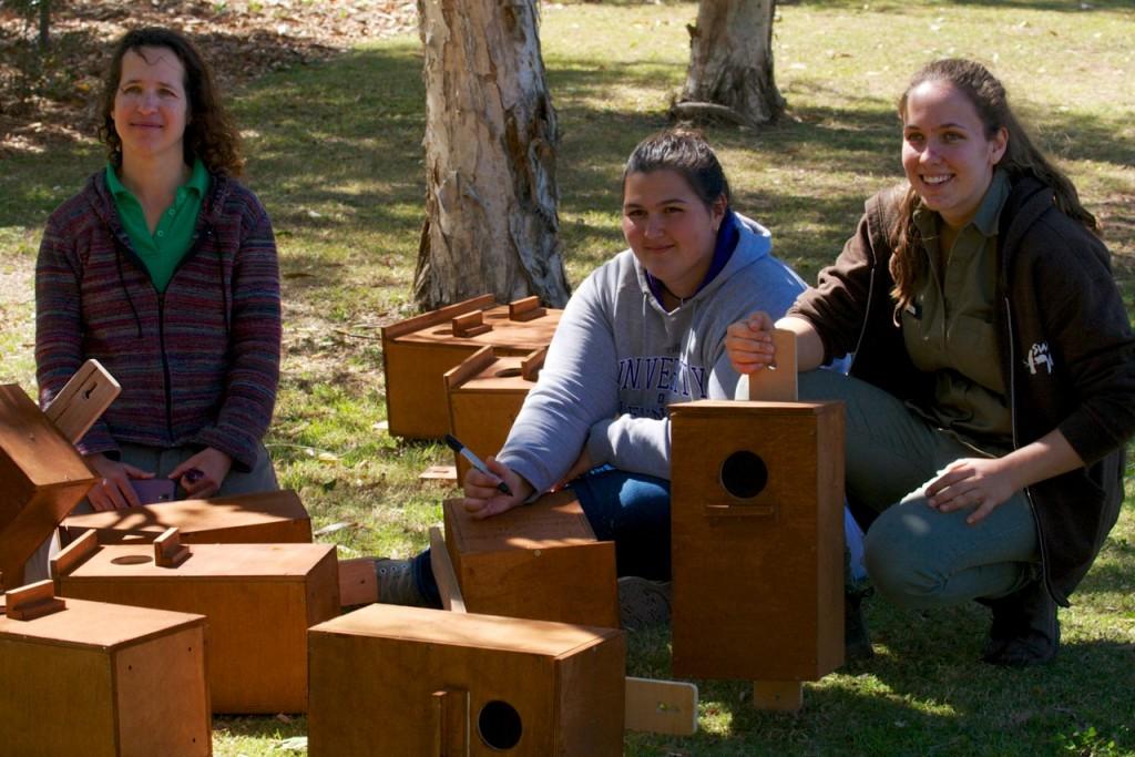 Nest Boxes2