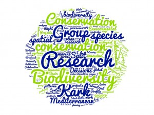 wordcloud Kark web page 1